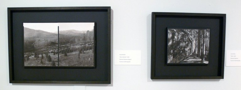 [Artist's works selected for the Going Forward, Looking Back Exhibition]